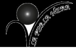 logo-png-okdw12uyvdrfqimgum12haw9zvzkmvt38za3keac8c-copy-p424gdfpqwd7p5cw610wm6fsen7msm7x62ynnvdca4 copy